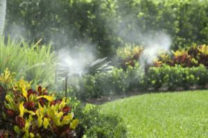 mosquito system maintenance