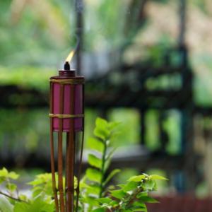 mosquito misting system Florida